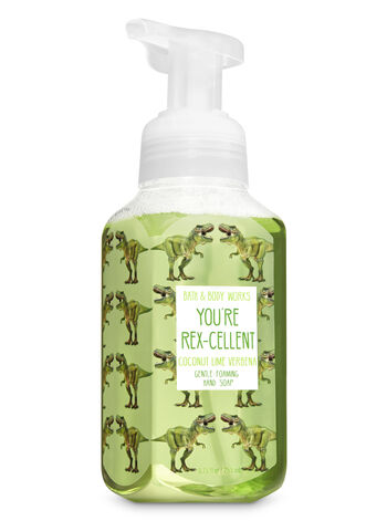 null - Coconut Lime Verbena Gentle Foaming Hand Soap