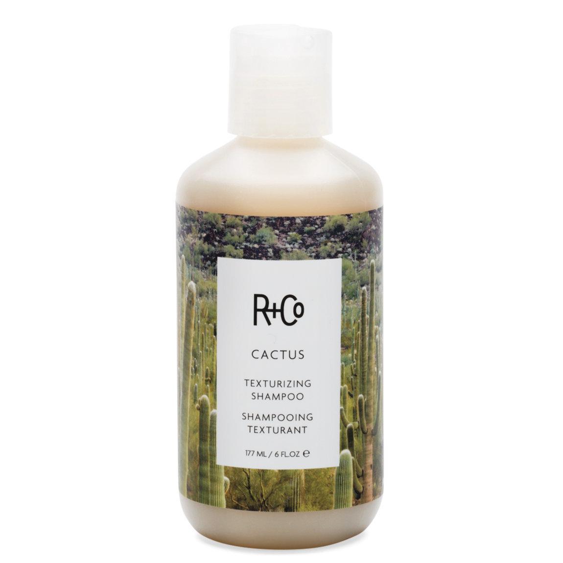 R+Co - Cactus Texturizing Shampoo