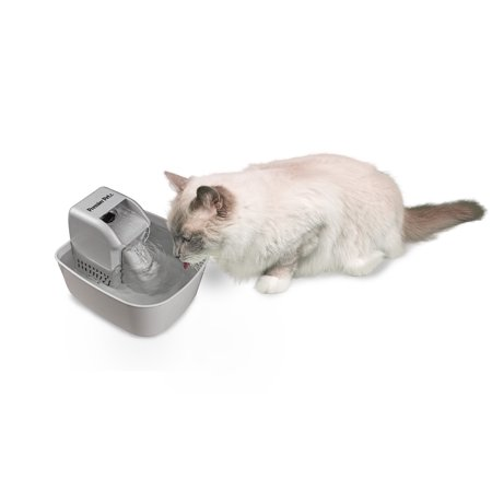 Premier Pet - Premier Pet Fountain 50 Ounce Capacity Bowl Automatically Filters and Circulates Drinking Water for Cats and Dogs - Free Falling Stream Encourages Pets to Drink More