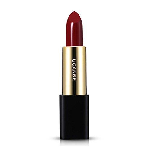Mr.Macy - Mr.Macy Lipsticks Make Up,Moisturizer Matte Lips Stick Long Lasting-Mini Matte Lipstick Set-Liquid Colorstay Organizer-20ce Red Lipstick (E)