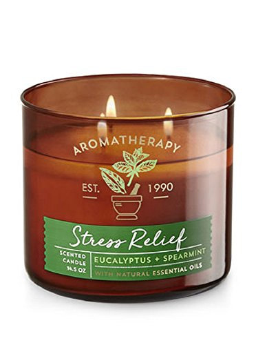 Bath and Body Works - Bath & Body Works Aromatherapy Stress Relief, Eucalyptus + Spearmint Scented Candle
