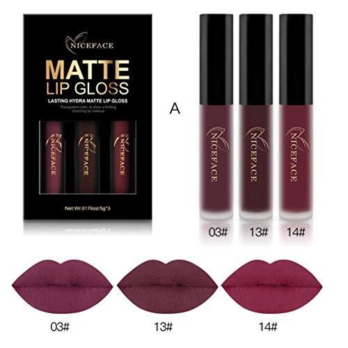 Fenleo Fenleo Matte Liquid Lipstick, 3 Pcs Waterproof Long Lasting Sexy Moisturizing Lipstick Set (A)
