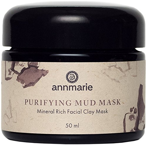 Annmarie Skin Care - Purifying Mud Mask